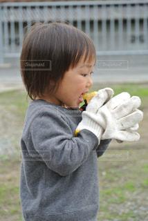 焼き芋を食べる子どもの写真・画像素材[1814793]