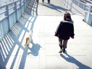 ネコと散歩 - No.722550