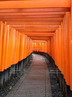 京都,観光,伏見稲荷