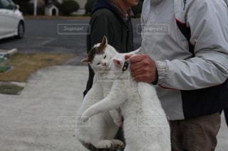 猫を持って男 - No.706515