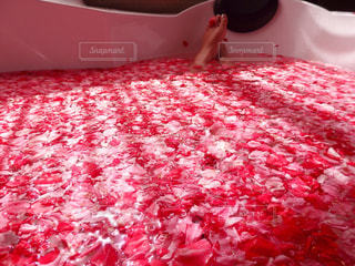真っ赤な表面のピザ - No.855729