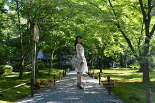 木の隣に歩く女の写真・画像素材[906753]