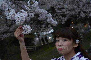 花,春,桜,京都,お花見,着物,嵐山,デート,ハイカラさん