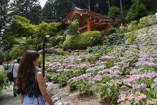 庭に立っている女性の写真・画像素材[1241032]