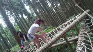 木製のフェンスの背に乗る人 - No.1241074