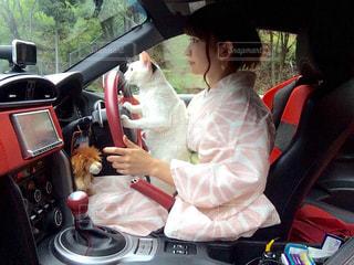 車に座る人の写真・画像素材[1291601]