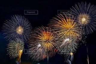 夜空に花火のグループの写真・画像素材[1310999]