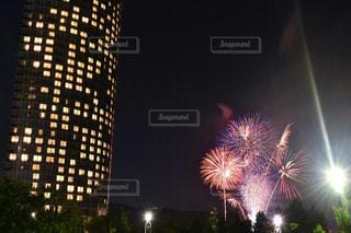 夜空の花火の写真・画像素材[1311005]