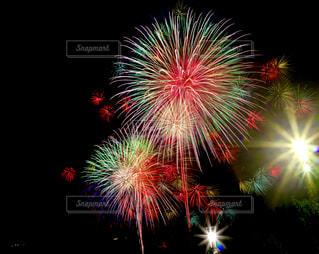 夜空の花火の写真・画像素材[1311008]