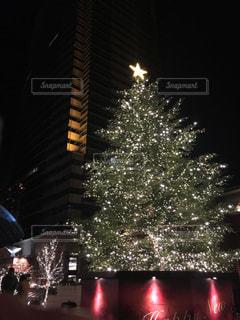 冬,クリスマス,ツリー,恵比寿,クリスマスツリー,恵比寿ガーデンプレイス
