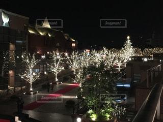冬,イルミネーション,クリスマス,ツリー,恵比寿,クリスマスツリー,恵比寿ガーデンプレイス