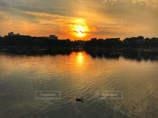 大濠公園の夕日の写真・画像素材[975303]