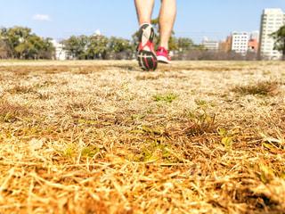 走る人の写真・画像素材[997899]