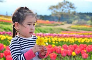 花を保持している小さな女の子の写真・画像素材[710461]