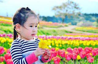 花を保持している小さな女の子の写真・画像素材[889276]