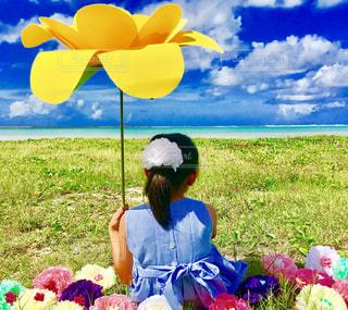 海と花🌼🌸の写真・画像素材[807621]