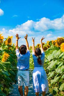 花,LOVE,カップル,太陽,ひまわり,青空,向日葵,ポートレート,デート,summer