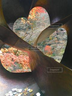 秋,紅葉,ハート,恋人の聖地,茨城県,袋田の滝