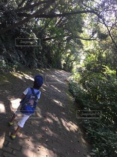 未舗装の道路を自転車に乗る男の写真・画像素材[727582]