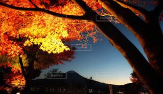 空,秋,富士山,紅葉,黄昏,山梨,河口湖,秋空,日暮れ