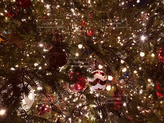 冬,ライト,光,イルミネーション,キラキラ,クリスマス,恵比寿,クリスマスツリー,ヒカリ,ピカピカ,オーナメント
