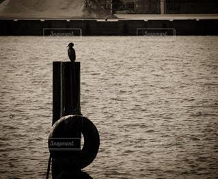 水の体の横に座ってボートの写真・画像素材[852286]
