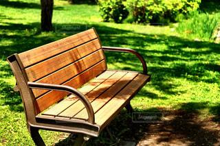 公園の真ん中に座っている木製のベンチ - No.754311