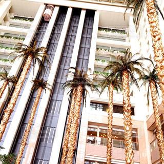 多くの窓の大型ビル - No.768856