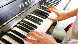 ピアノを持っている手 - No.813567