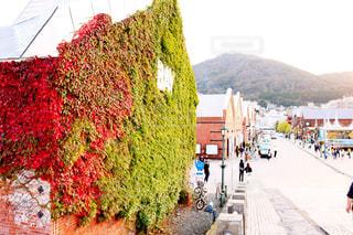 函館の観光名所。金森倉庫 - No.840494