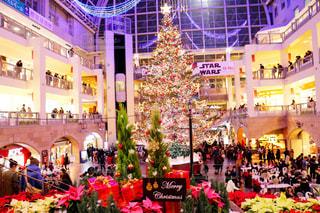 クリスマスツリーの写真・画像素材[955297]
