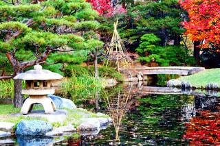 庭に大きな滝の写真・画像素材[956907]