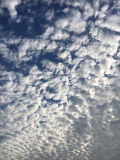 秋 空 鱗雲 青い 白い 晴天