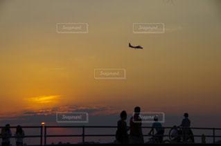 夕日で空を飛んでいる鳥 - No.956044