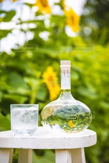 ベンチに座って花の花瓶の写真・画像素材[1282284]