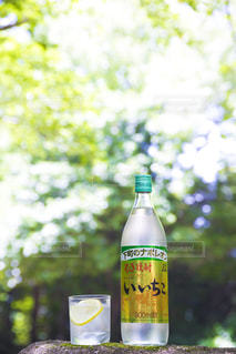 ワインのボトルの写真・画像素材[1282298]