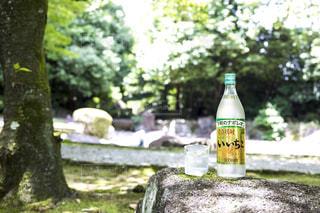 ピクニック テーブルの上に座っているワインのボトルの写真・画像素材[1282303]