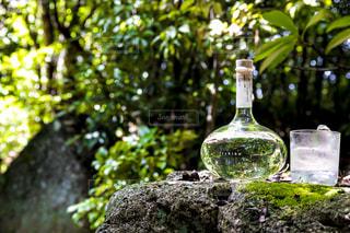 岩の上に座っての花で一杯の花瓶の写真・画像素材[1282349]
