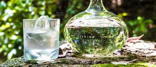 ボトル ・ ワインのガラスの写真・画像素材[1282614]