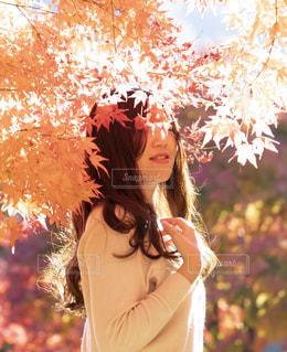花の前に立っている女性の写真・画像素材[1617028]