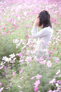 草にピンクの花の小さな女の子が立っています。の写真・画像素材[1617128]