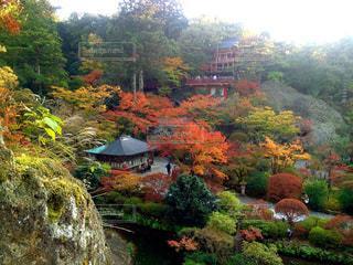那谷寺の紅葉の写真・画像素材[840900]