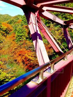 あやとり橋と紅葉の写真・画像素材[854021]
