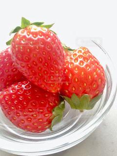 赤,いちご,苺,フルーツ,果物,果実,とちおとめ,イチゴ,栃乙女