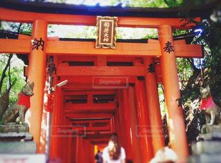 京都,赤,鳥居,伏見稲荷大社,稲荷,稲荷大神