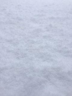 新雪の写真・画像素材[924658]