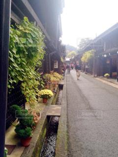 街並み,植物,雨上がり,休日,ドライブ,飛騨高山,高山,お出かけ,岐阜県