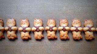 ネコのクッキーの写真・画像素材[1048782]
