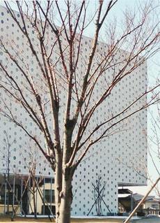 金沢海みらい図書館の写真・画像素材[1101258]