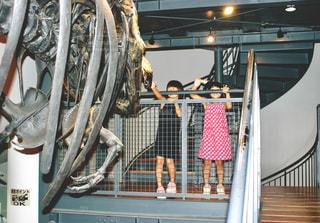 福井県立恐竜博物館の写真・画像素材[1163004]